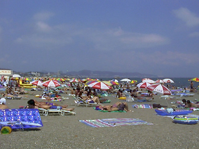 三浦 海岸 海水 浴場